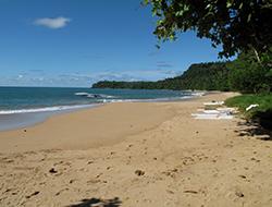 praiaburras